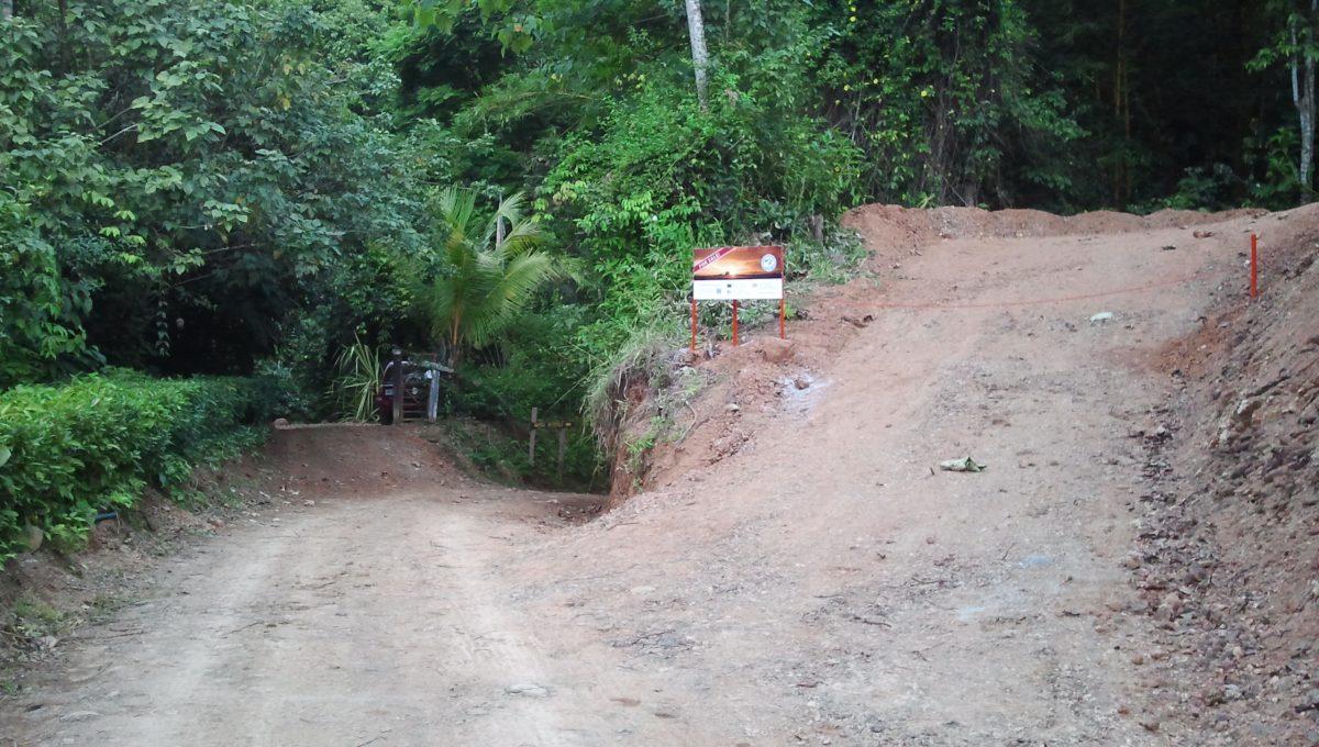 Camino entrada 1