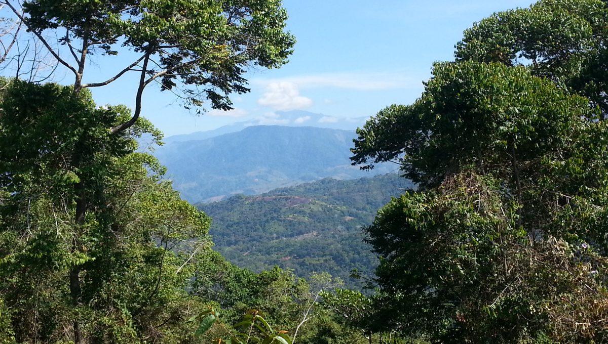 Vista montagna