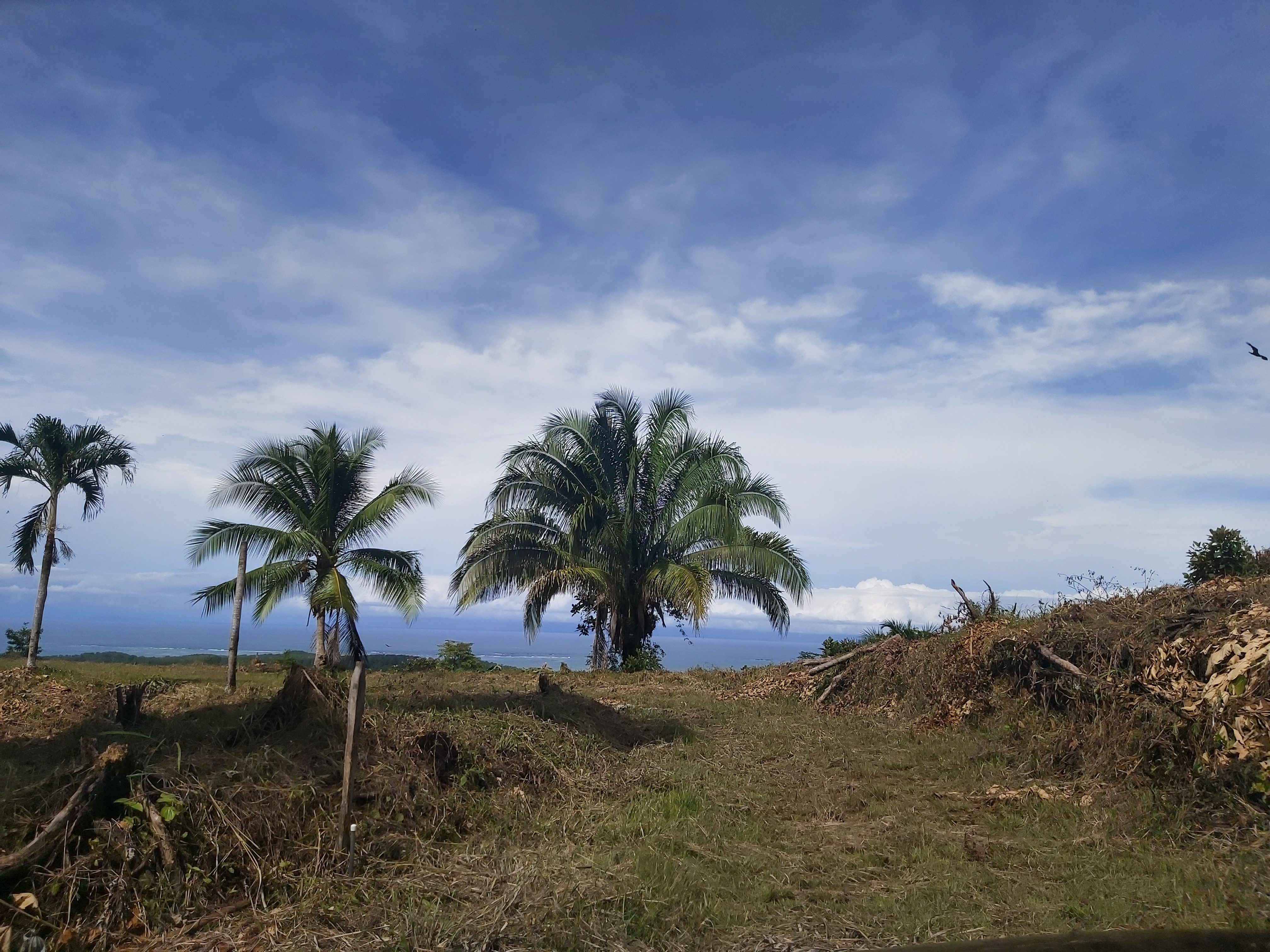 Stunning Ocean View Lot – Ready to Build