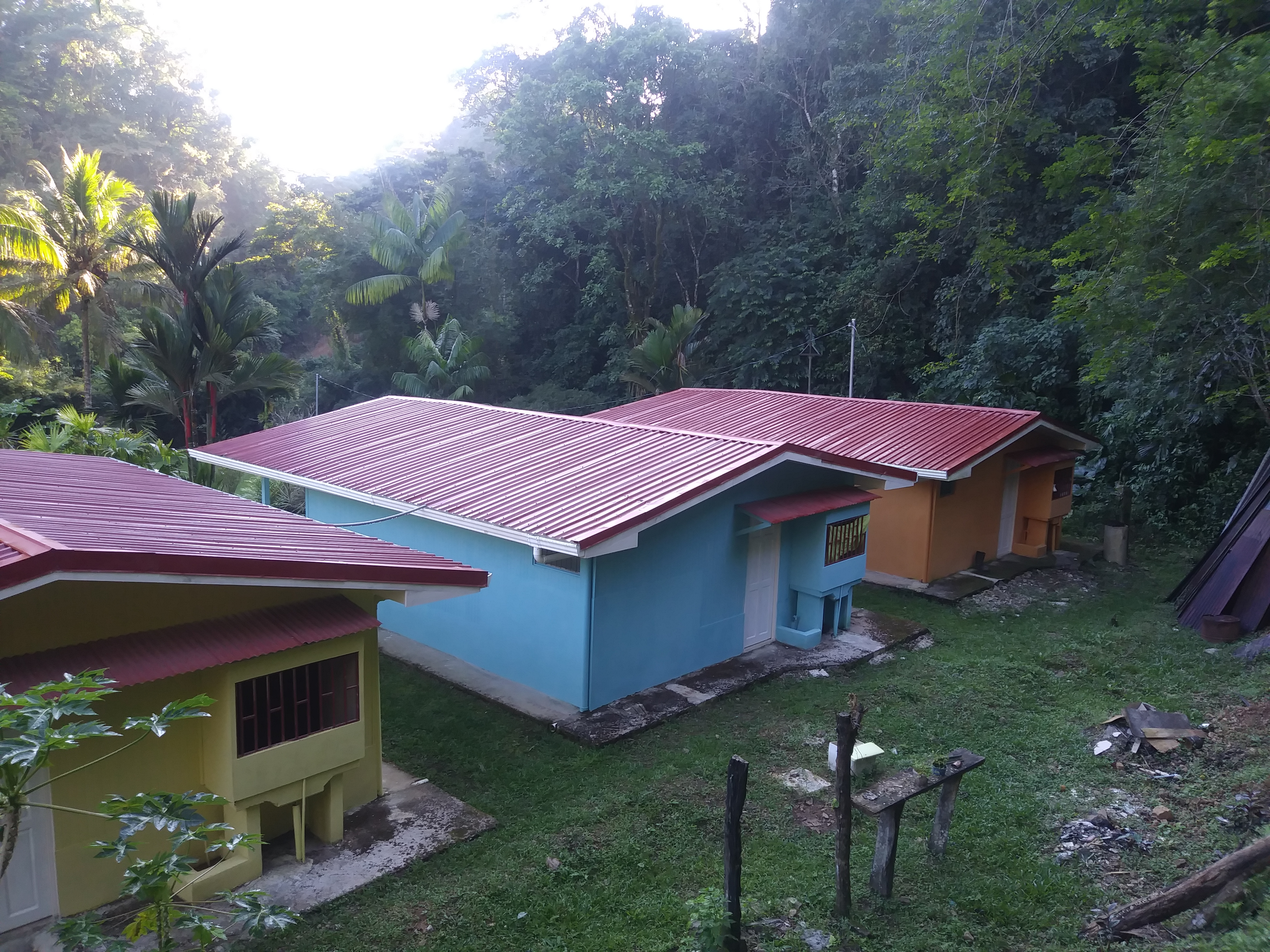 24.5 acres of jungle paradise with a river in Tierras Morenas