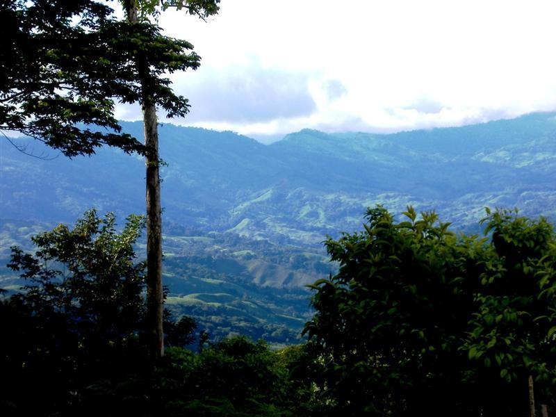 tgtçPlatanillo Valley