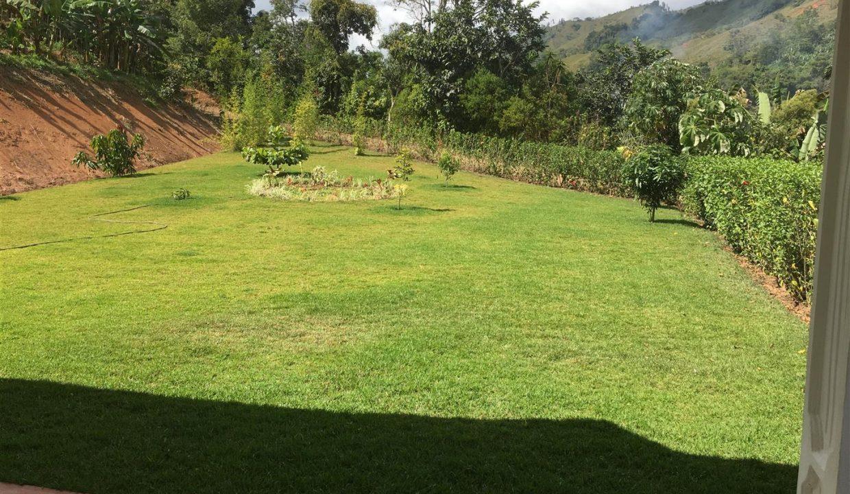 20 lawn