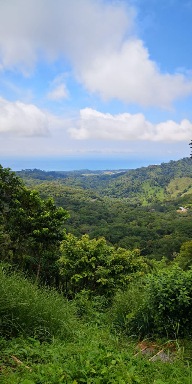 Amazing Deal Ocean View lot in Lagunas Dominical with Legal Water