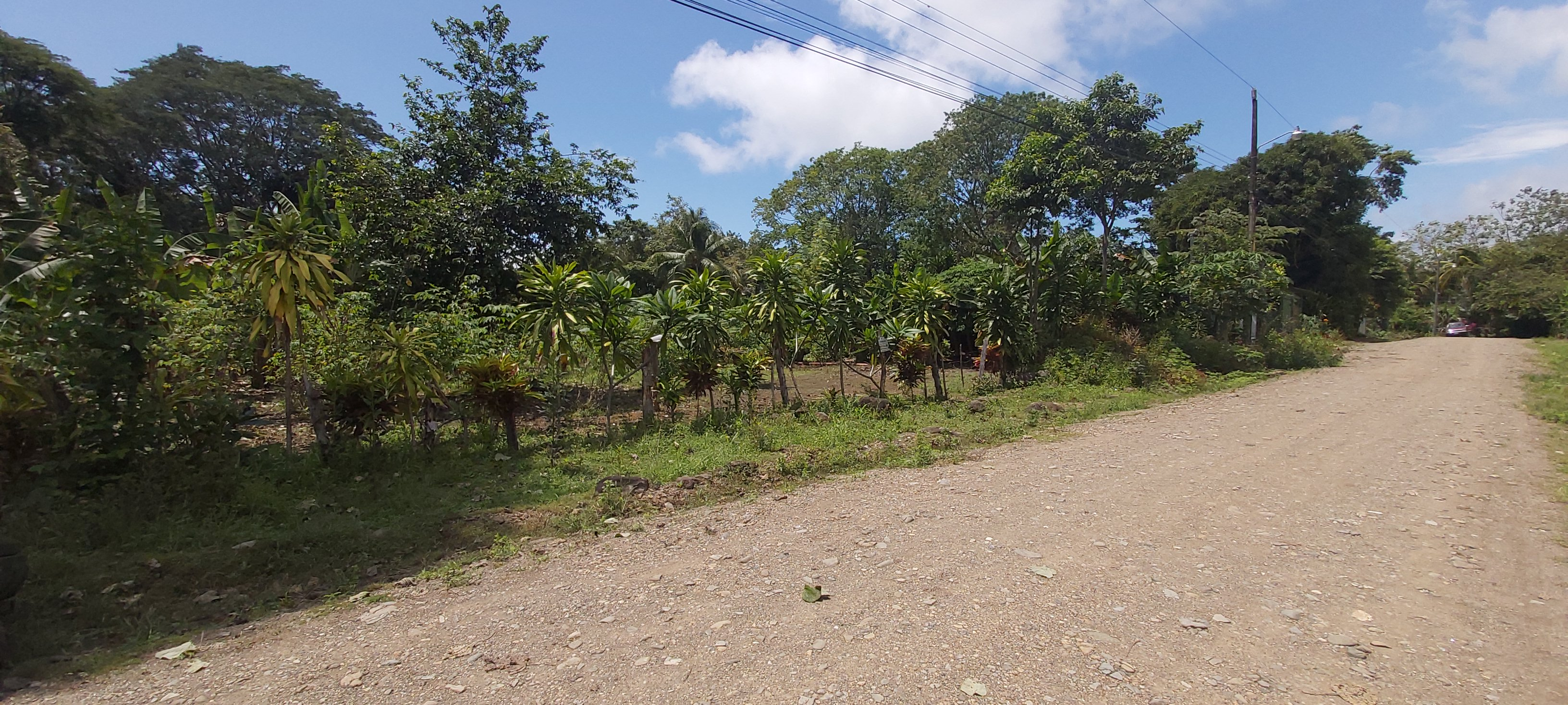 Lot in Uvita Ready to Build