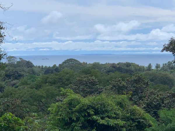Property in the heart of Uvita that has a rare combination of residential ocean view and prime commercial