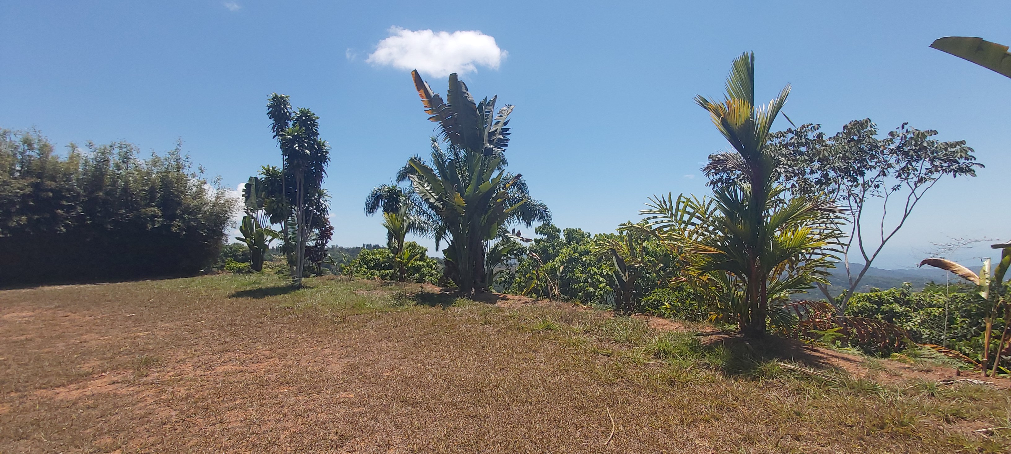360 Valley and Ocean Sunset View Lot in Tinamastes