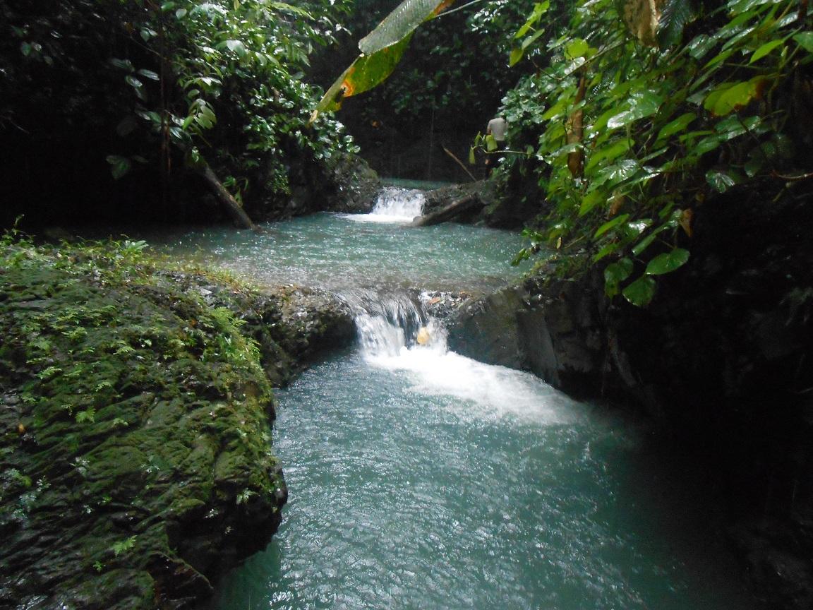 Waterfall Farm Opportunity