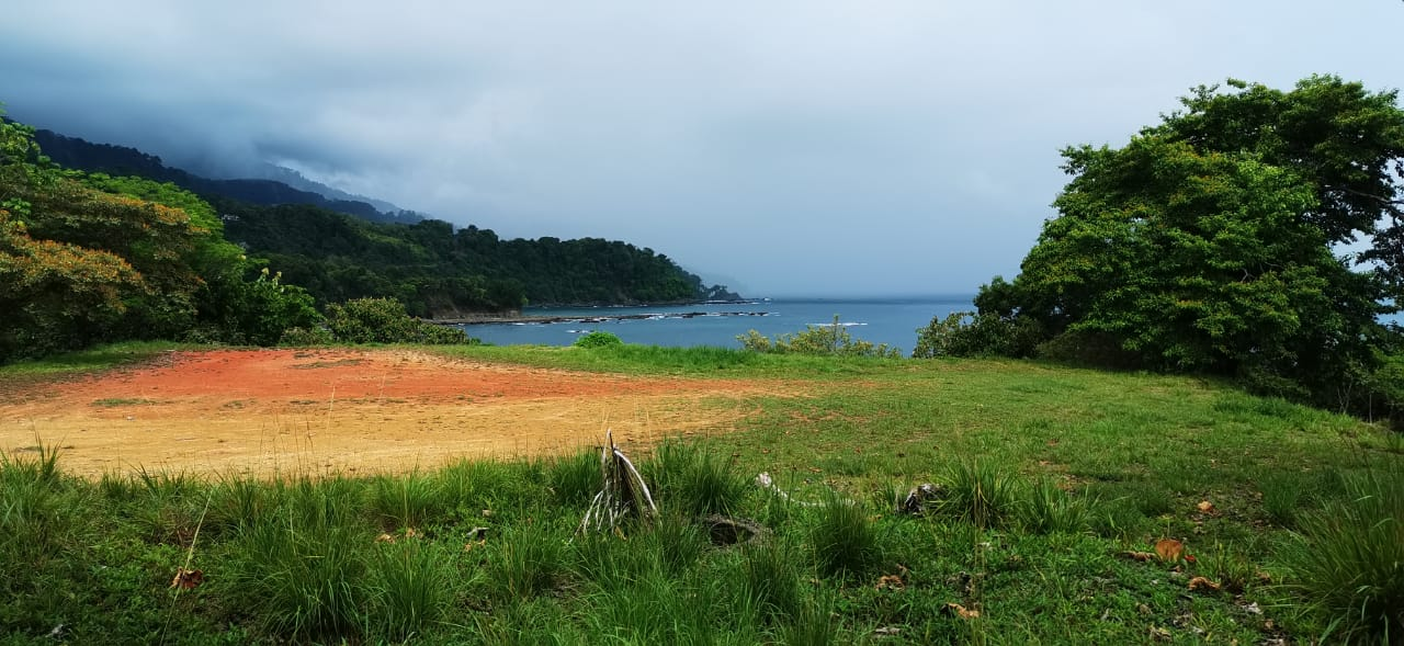 Unique ocean front and view property in San Martin, Dominical, Osa.