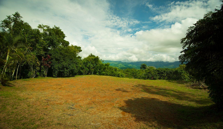 Finca Verde Upper Plantel Photos
