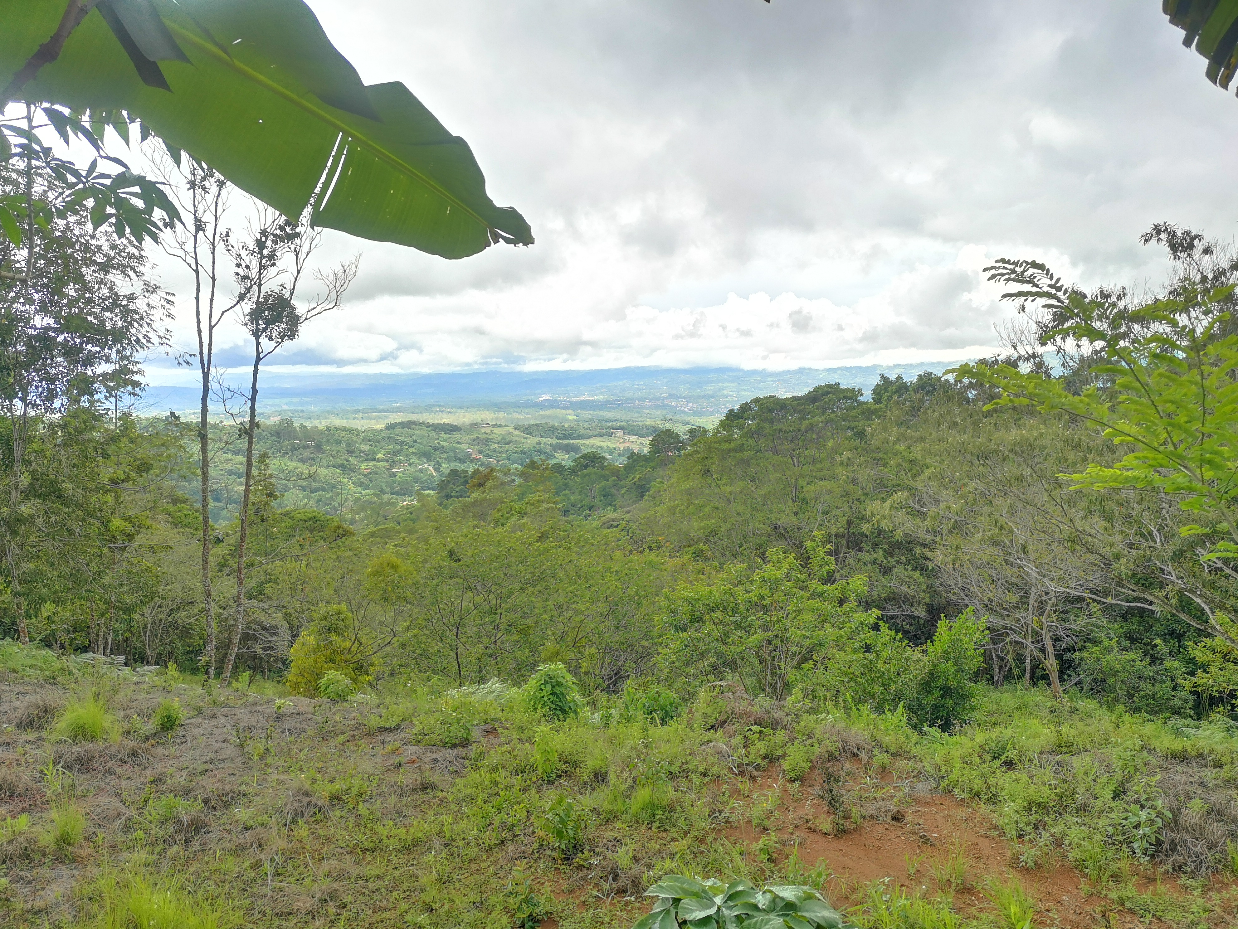 Lot with beautiful view of San Isidro in La Ese, Perez Zeledon