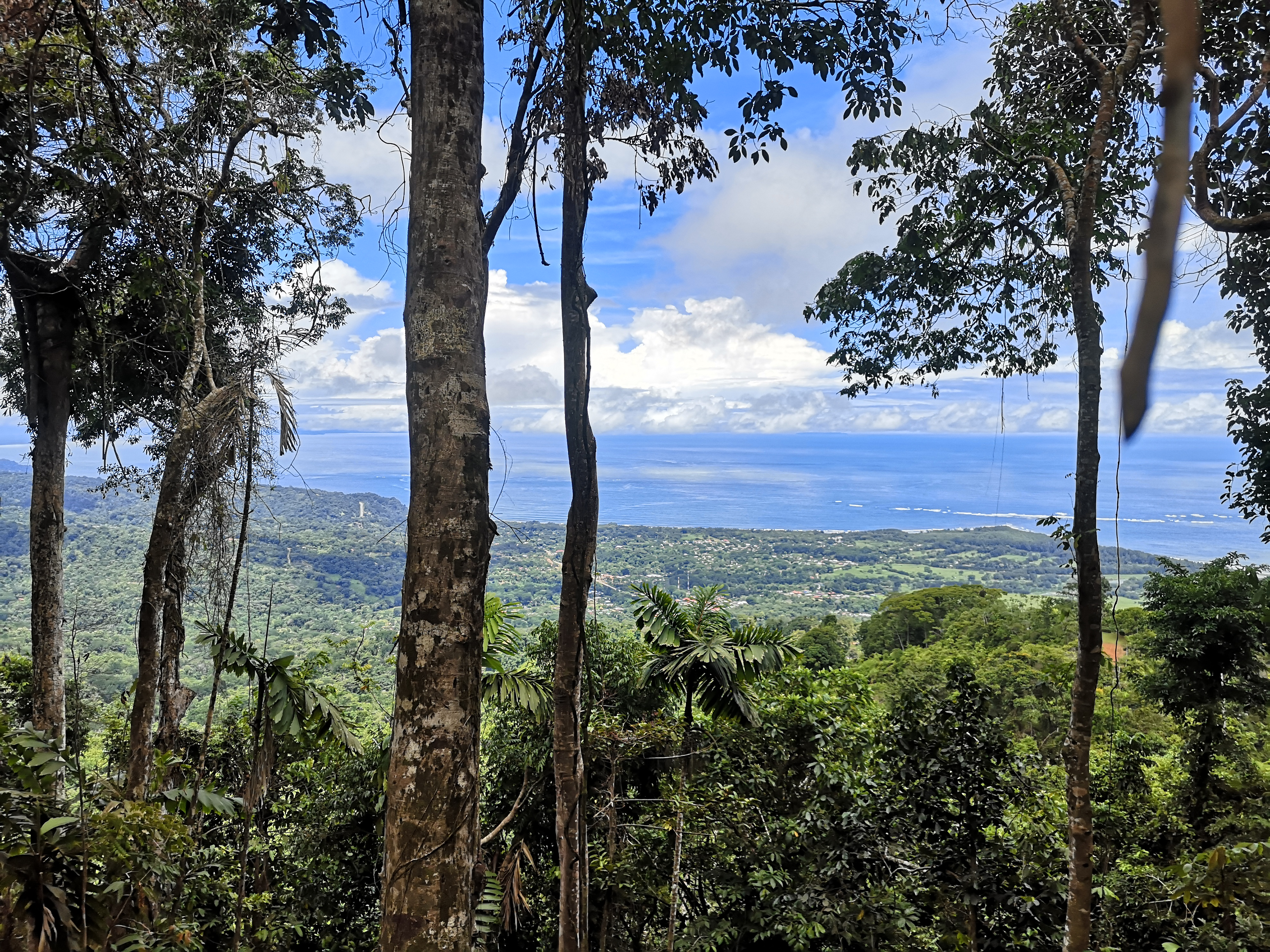 Lot with wonderful view to the tail of the whale, Uvita, Osa