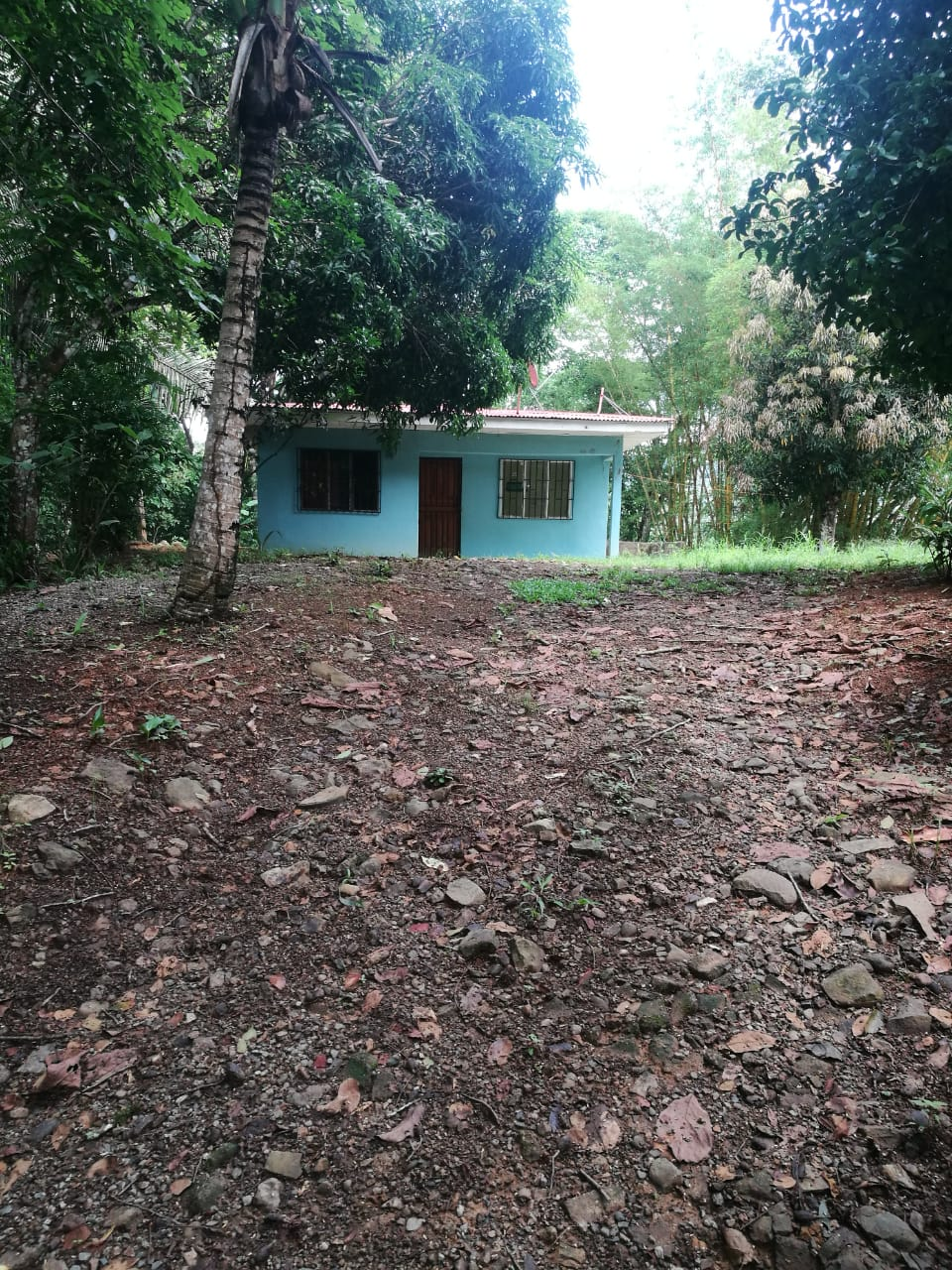 Property with small cascade and house for sale in Pejibaye, Pérez Zedelón