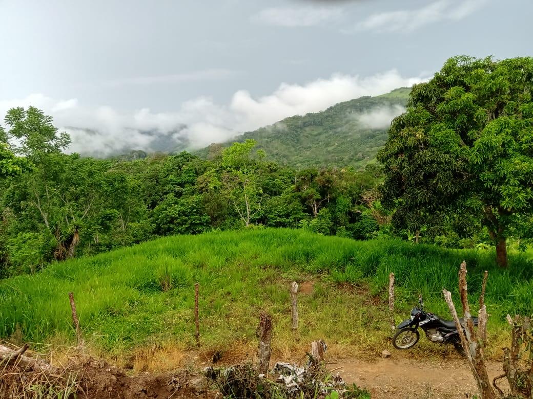 Nice farm with 2 springs in Santa Rosa, Perez Zeledon