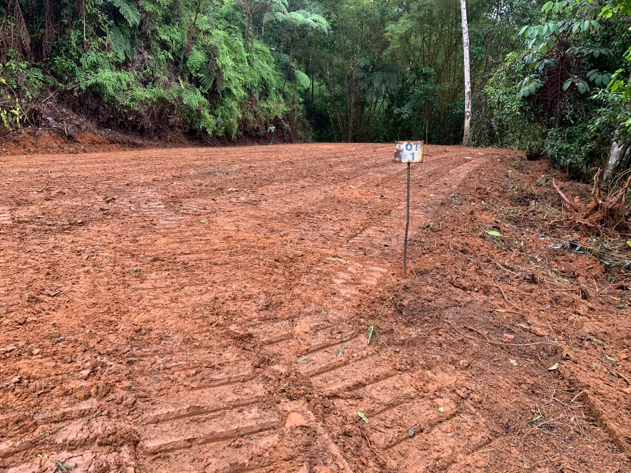 Property with valley view in Tierras Morenas, Perez Zeledon