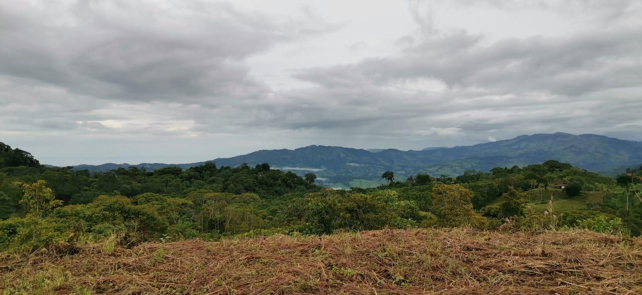 6 hectareas para desarrollar con vistas y agua propia todo el año