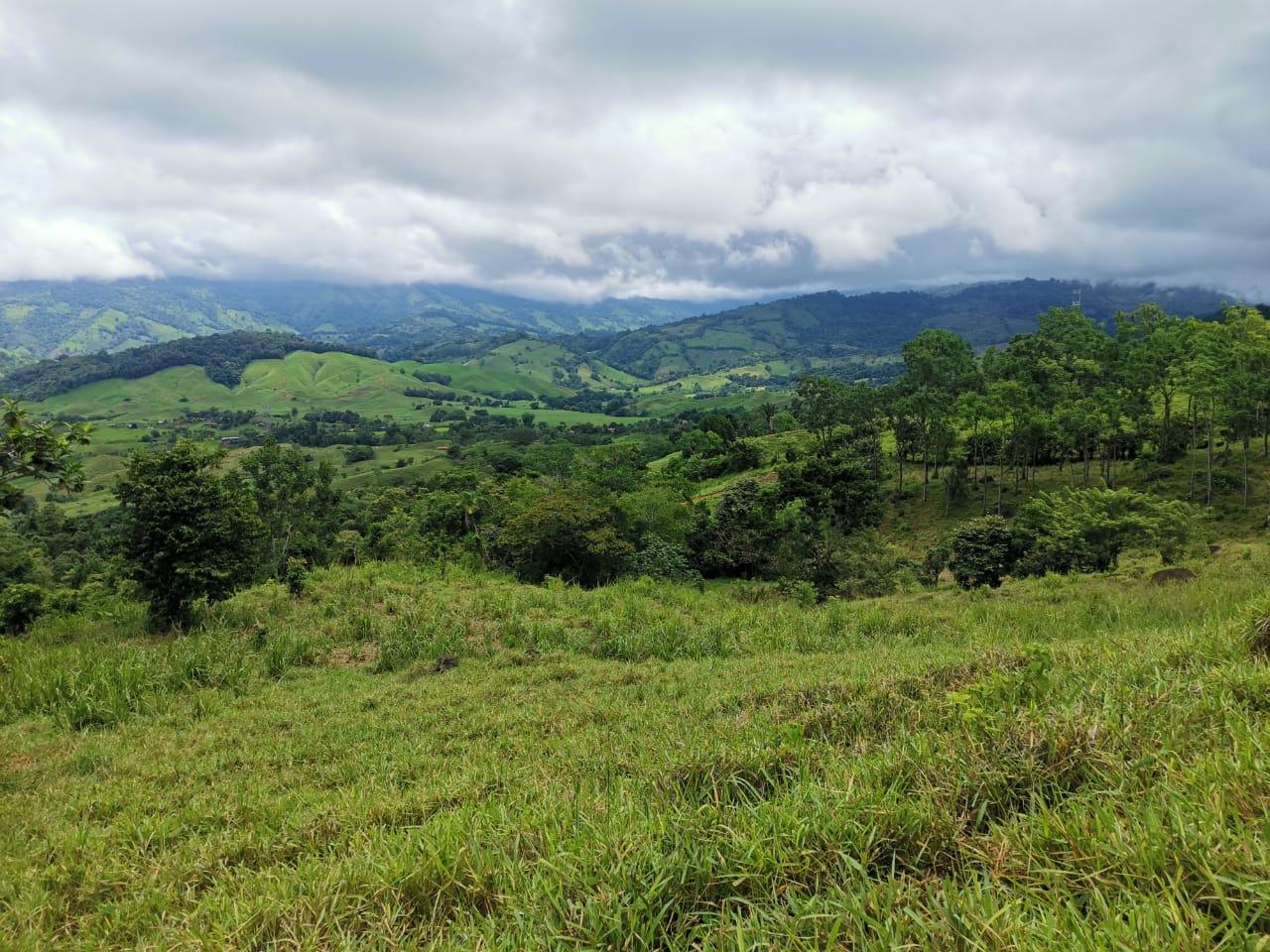 Farm in San Juan de Dios