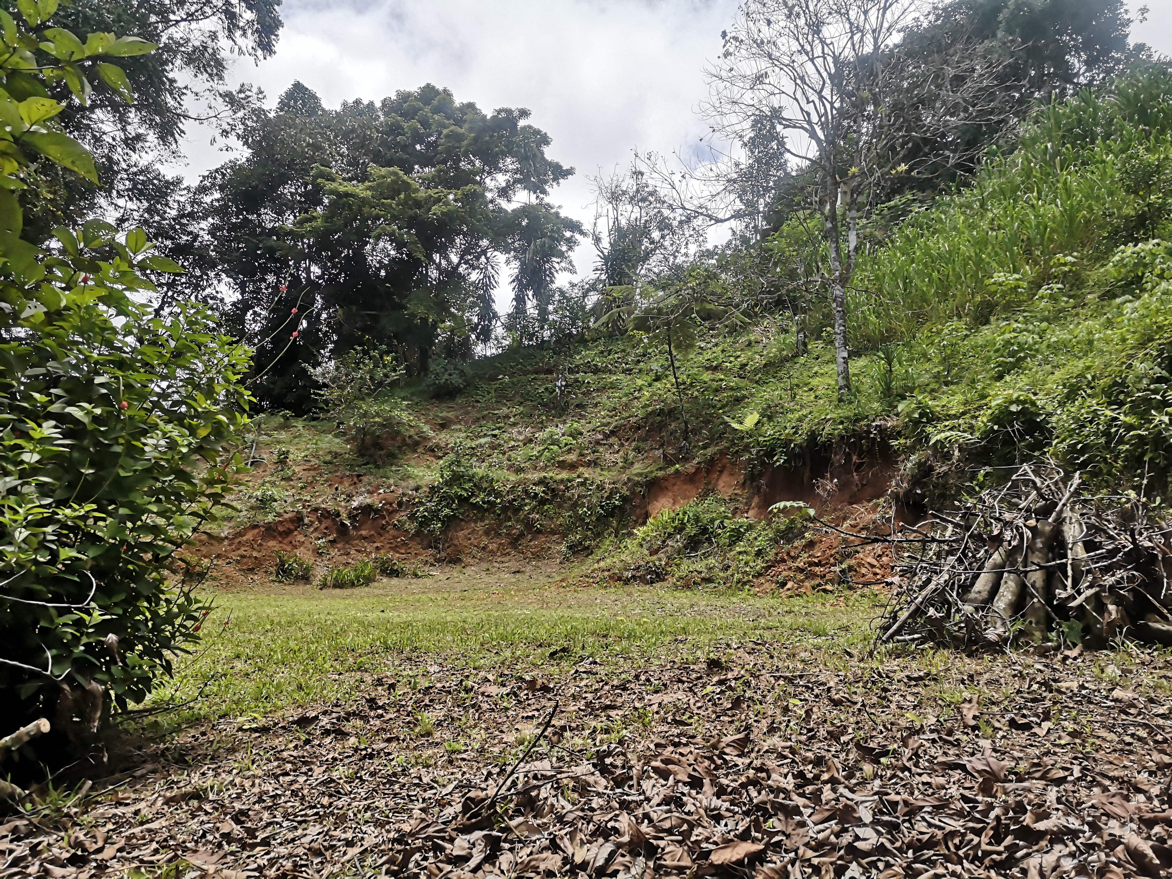Ready to build lot with creek in Platanillo, Baru