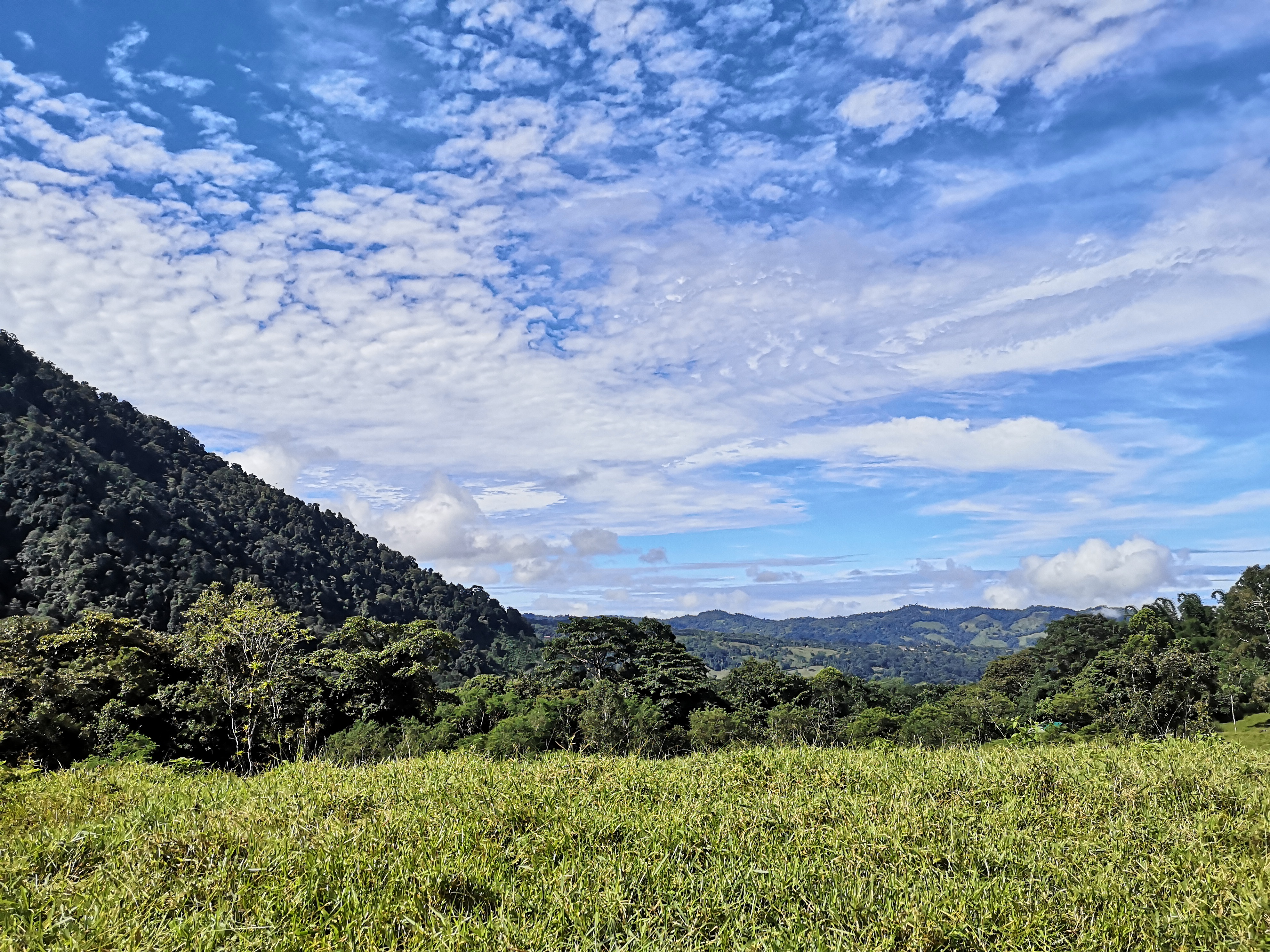Property ideal for development with 3 creeks in Las Tumbas, Baru