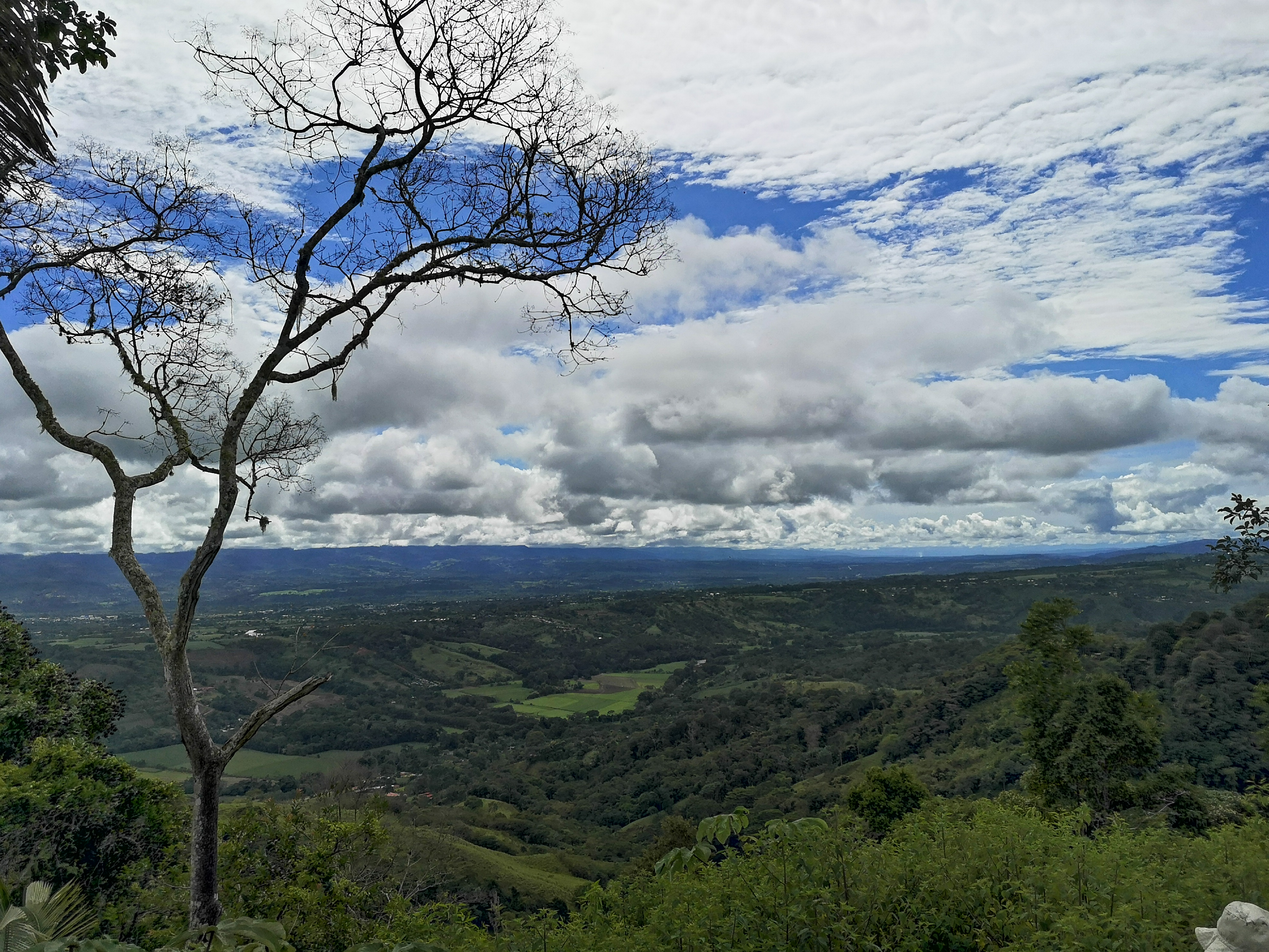 Finca with beautiful views of the mountains and the city in Pacuarito, Perez Zeledon