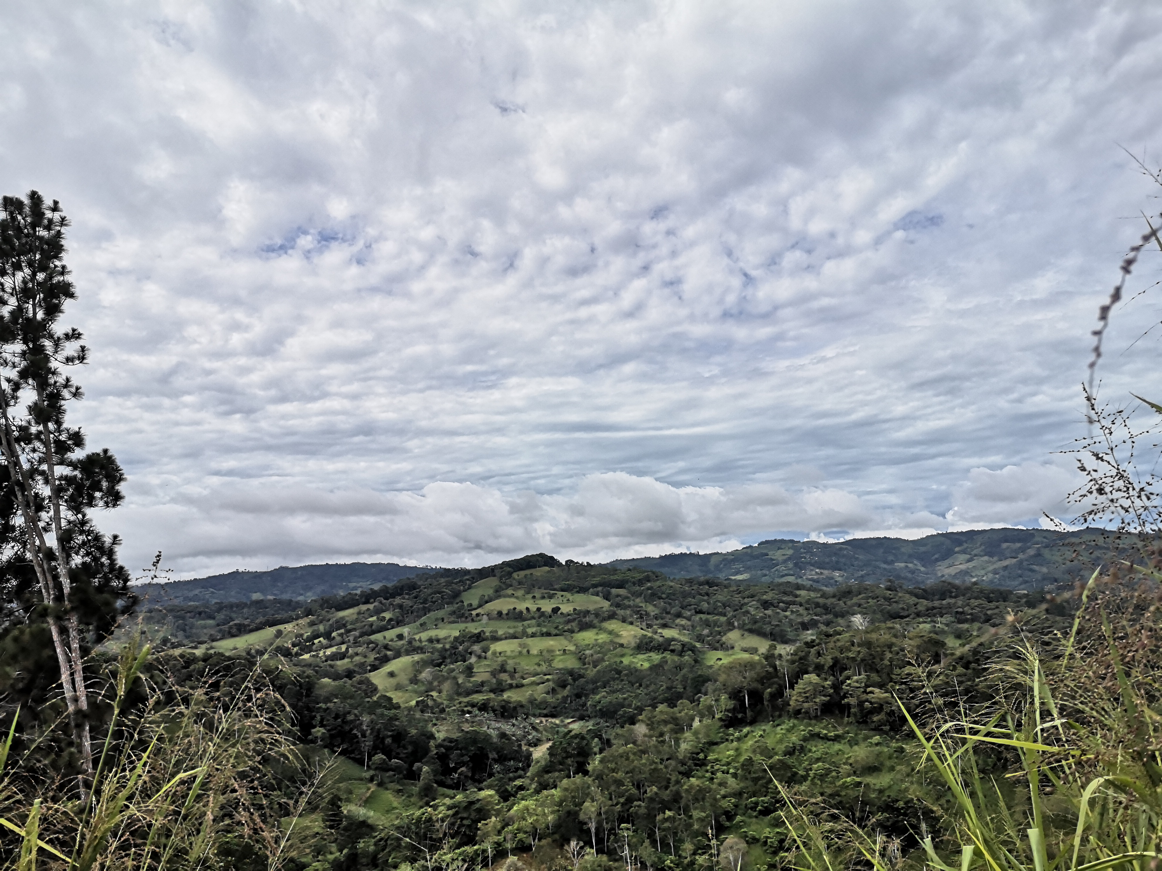 Ideal farm for development with advanced internal road and river in San Pablo, Perez Zeledon