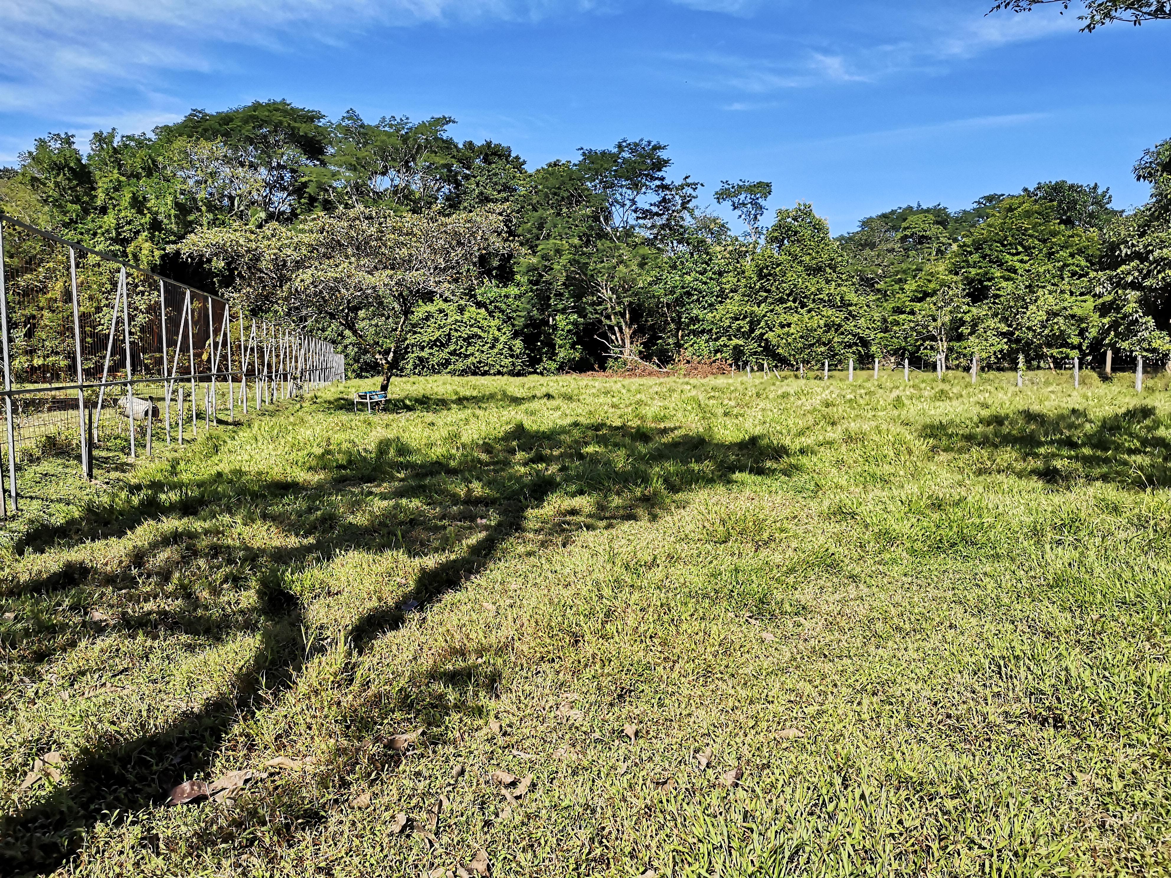 Flat lot ready to build 5 mins from Marino Ballena National Park, Osa
