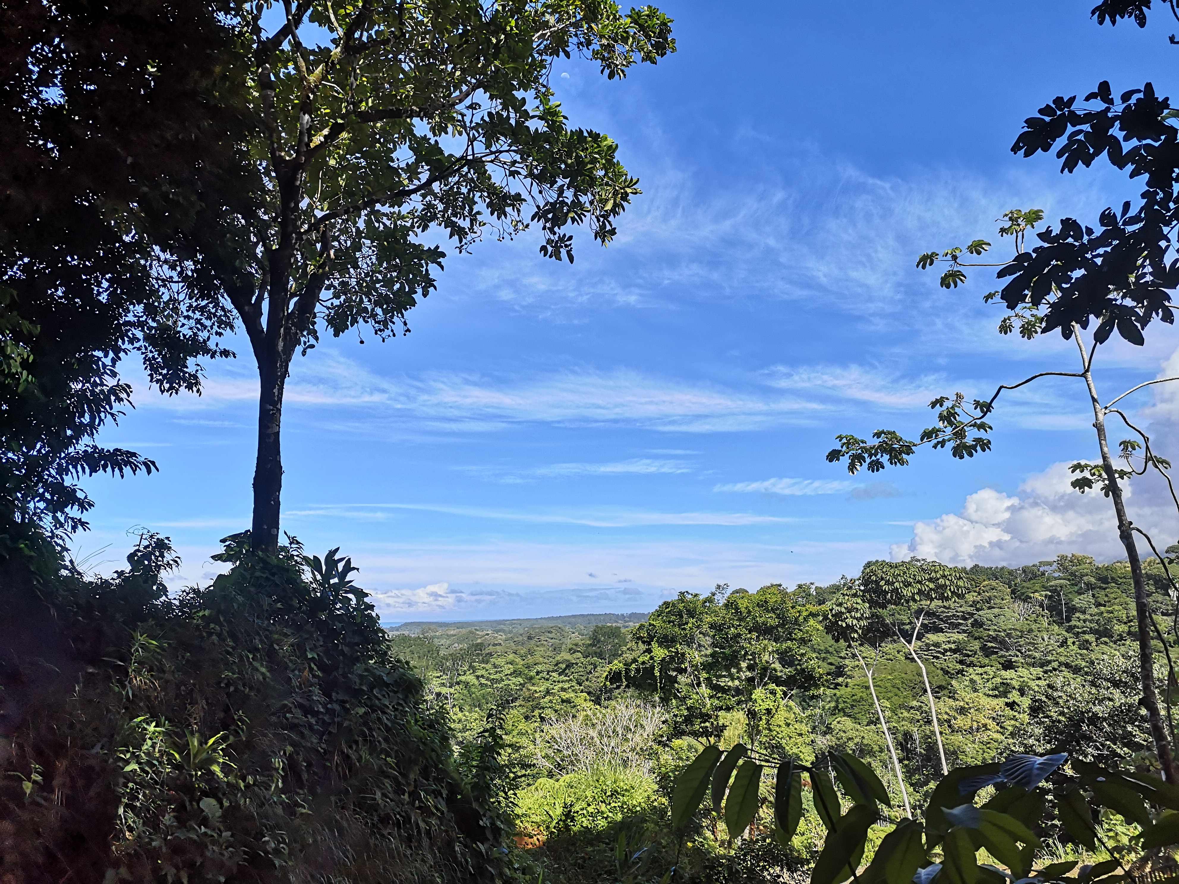 Property for development with advanced roads and creek in Bahia Ballena, Osa