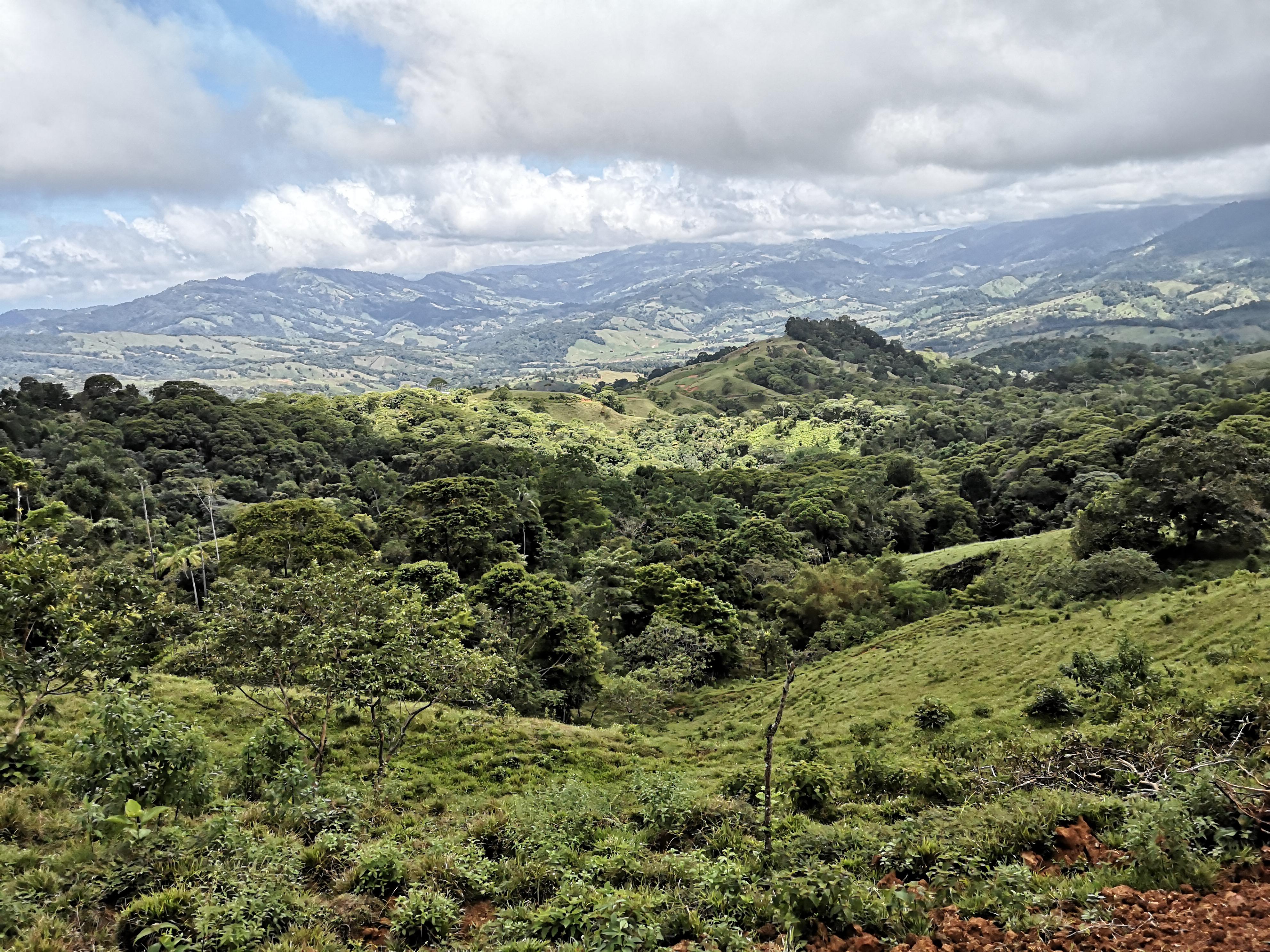 Lot with beautiful mountain views in Platanillo, Baru