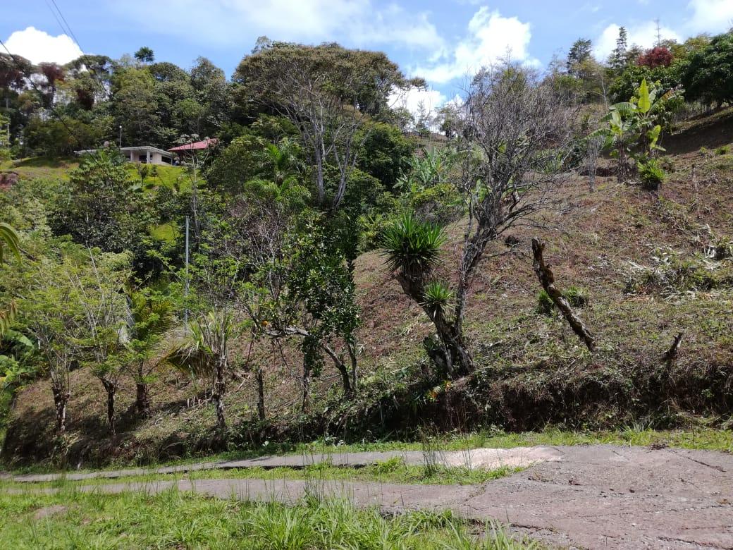 Beautiful property ready to build in San Rafael Norte, Perez Zeledon