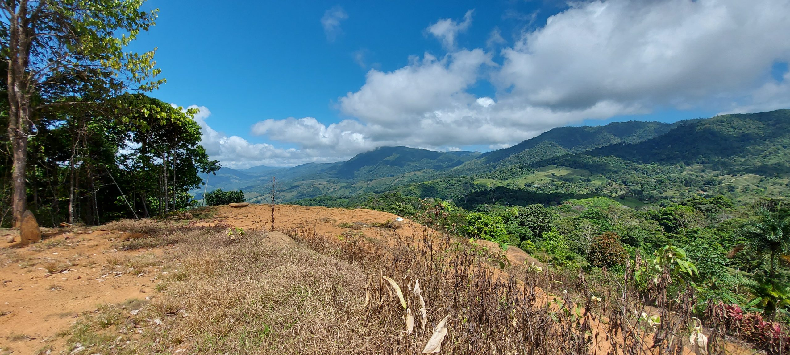 Property with spectacular mountain views and ready construction areas in La Alfombra, Baru