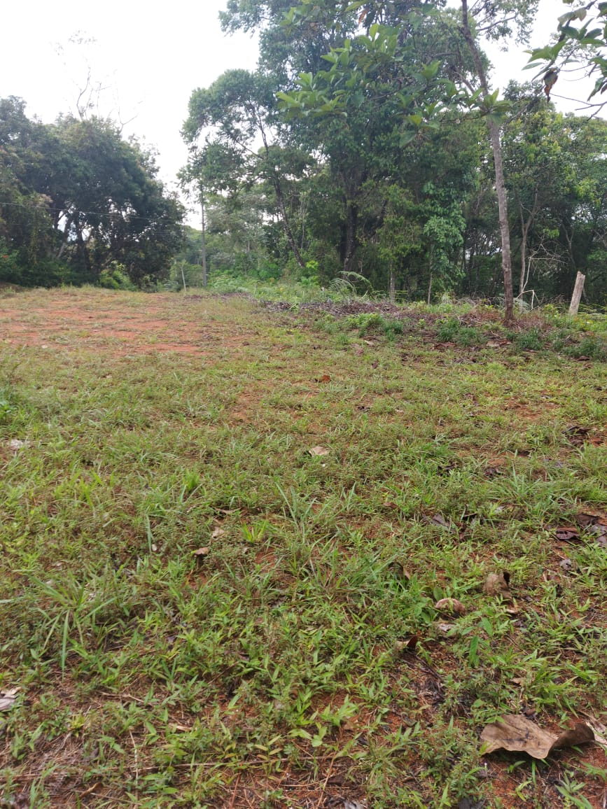 This nice 1-hectare property with Valley views in Platanillo.