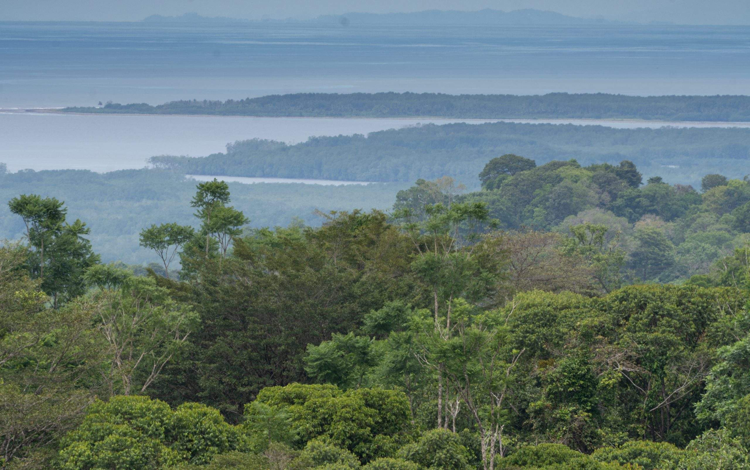 Sierpe Sunset and Jungle Views, 10 Acre Property, OSA!