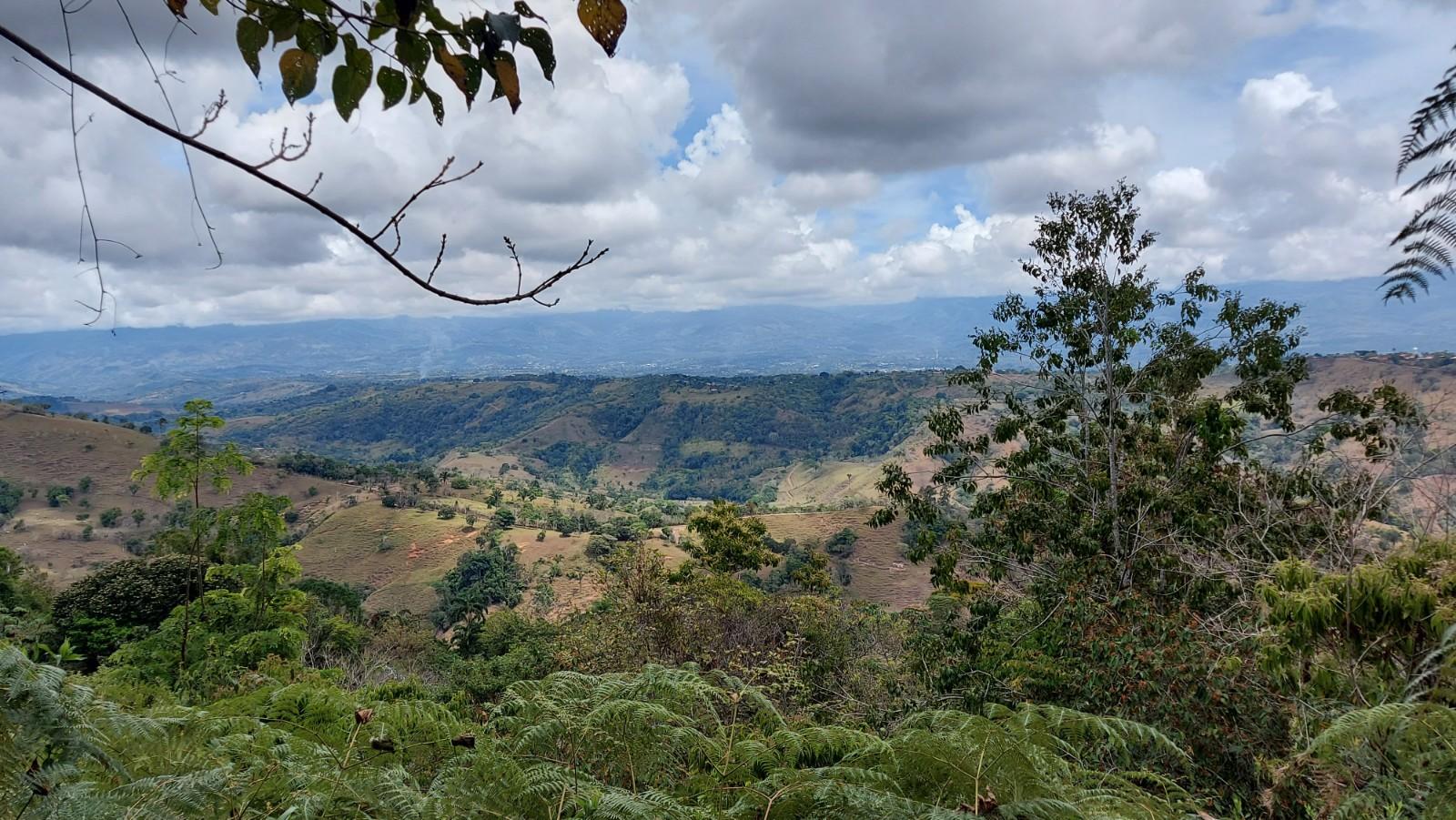 Finca Sueño Vivo: Rural Tropical Homestead in San Agustin, Perez Zeledon